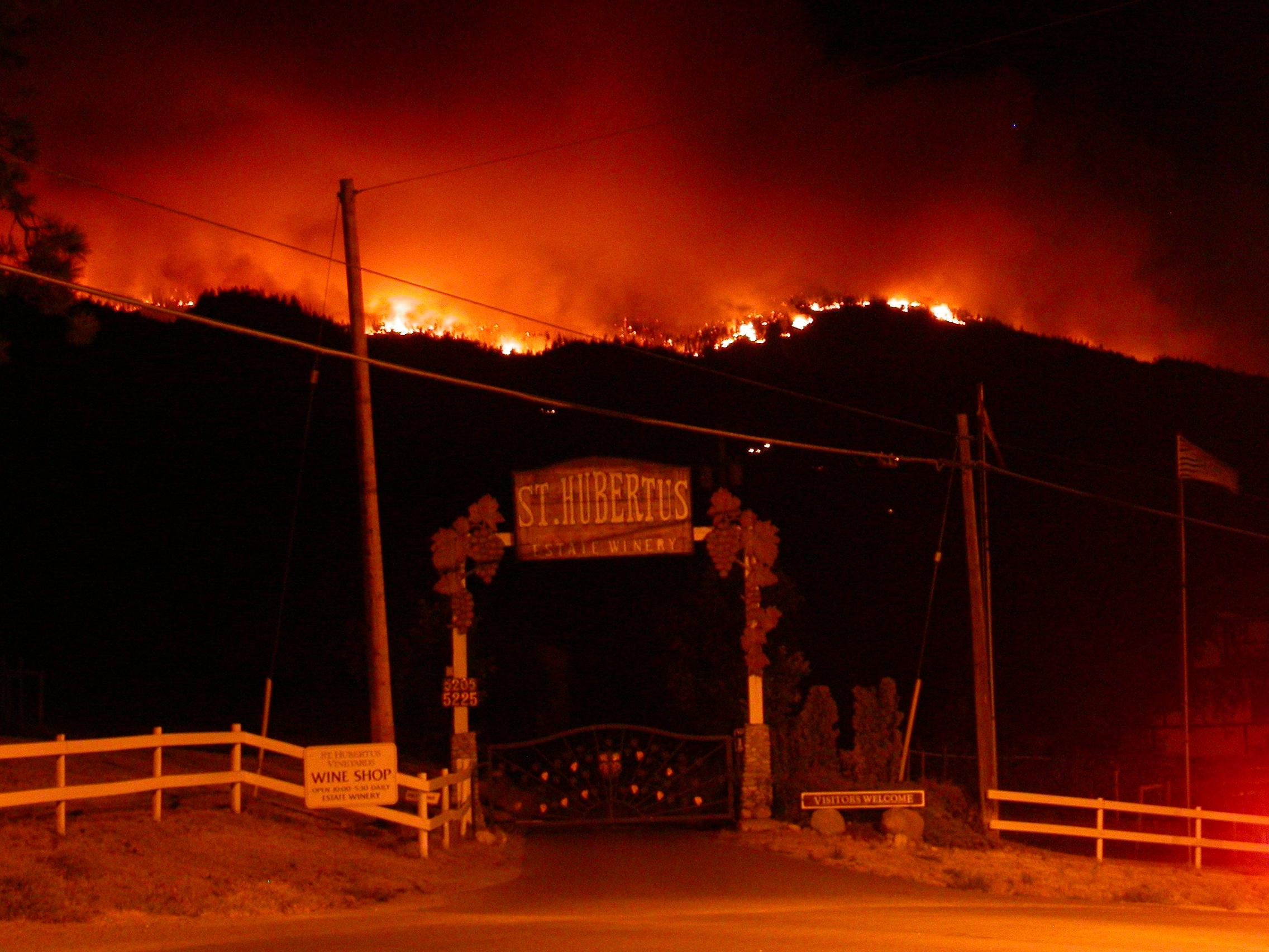 https://0901.nccdn.net/4_2/000/000/05a/a3f/2003-Wild-Fire.jpg