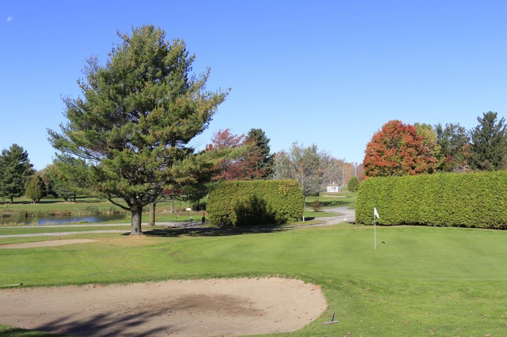 Vert no 4 - automne 2014