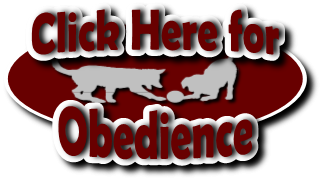 Click to go to the Obedience page