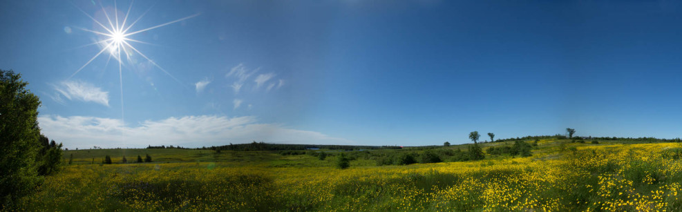 Lot 14-24, a lovely acreage to call your own, total privacy can be yours