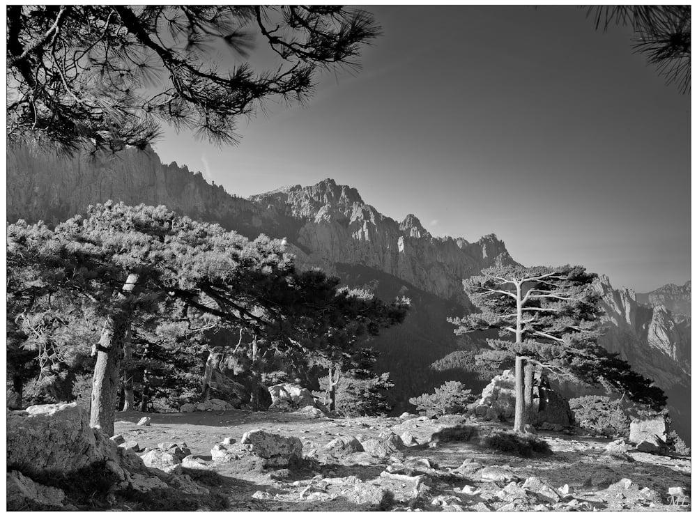 """""""3e prix"""" du 101e  salon de la SPAQ  (Catégorie Nature  Noir et Blanc Nov  2011 )  Les Aiguilles de  Favella, Corse - Avr  2010"""