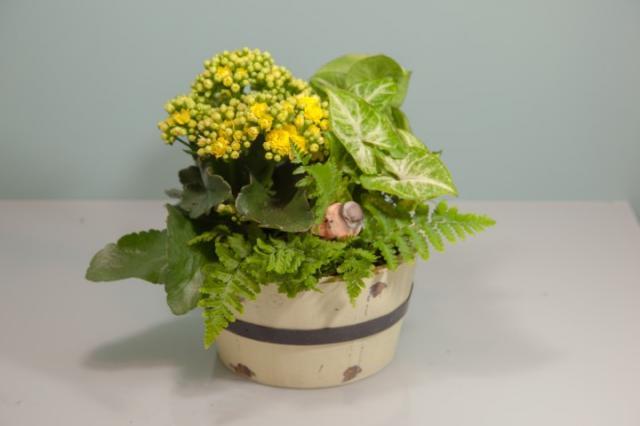 https://0901.nccdn.net/4_2/000/000/06b/a1b/lcp-planter-3.jpg