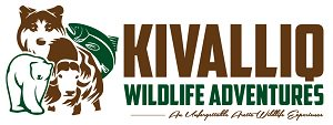 Kivalliq Wildlife Adventures
