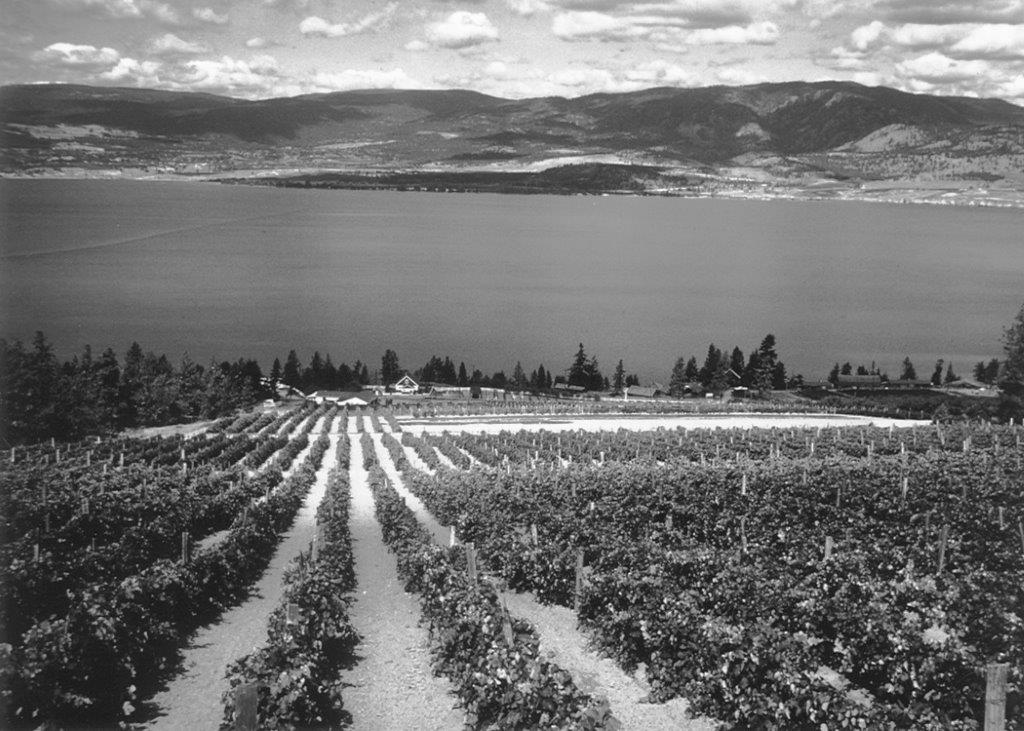 https://0901.nccdn.net/4_2/000/000/071/260/St-Hubertus---Oak-Bay-Estate-Winery-1950s-a.jpg