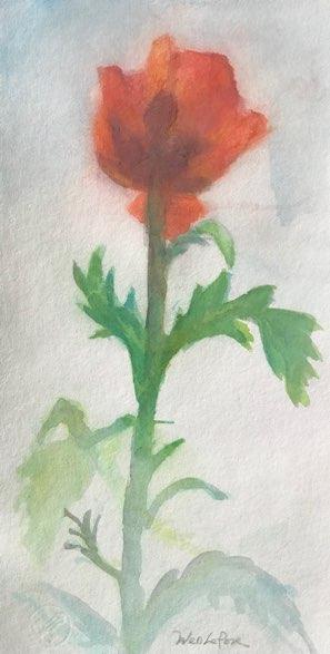 https://0901.nccdn.net/4_2/000/000/082/8ea/wen_lepore_watercolor201910.jpg
