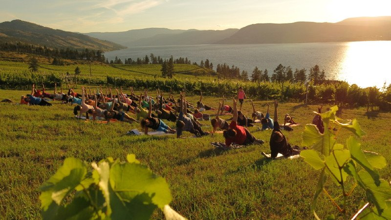 https://0901.nccdn.net/4_2/000/000/071/275/Pinot---Pilates-at-St-Hubertus---Oak-Bay-Vineyard.jpg