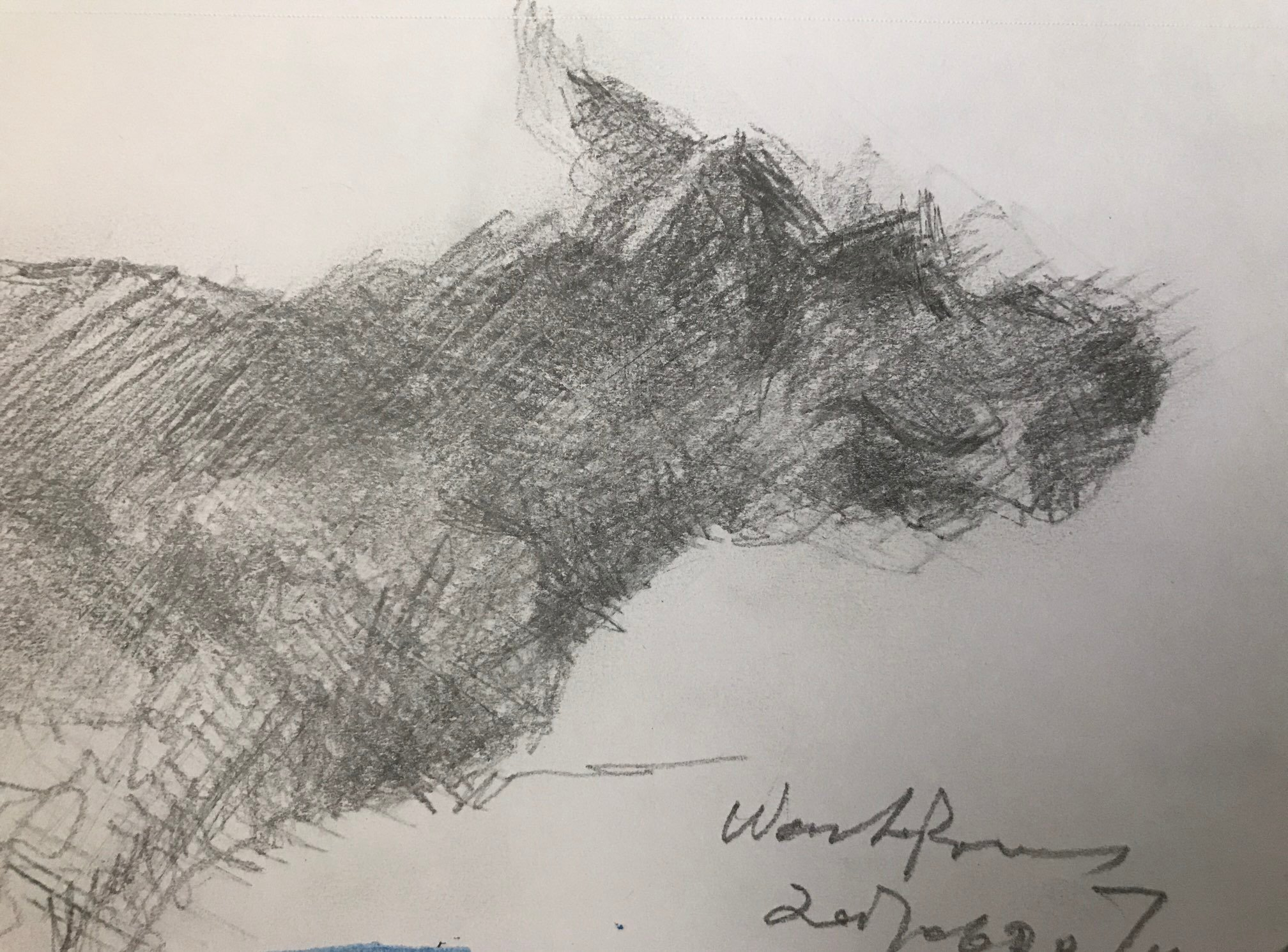 https://0901.nccdn.net/4_2/000/000/076/de9/sketche204.jpg