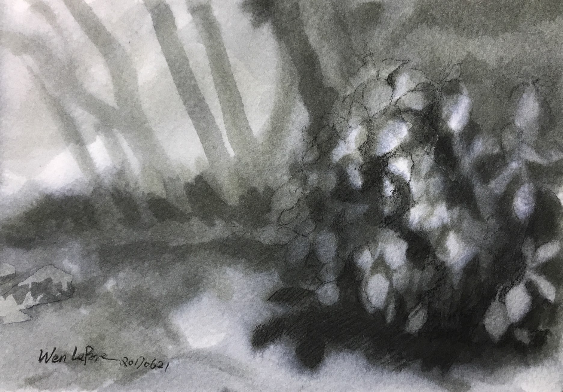 https://0901.nccdn.net/4_2/000/000/076/de9/watercolor20.jpg