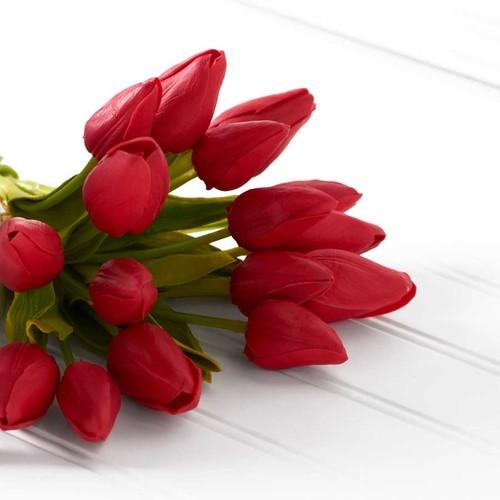 """Red Tulip Stem 13.5"""" $6.99 SALE $3.50"""