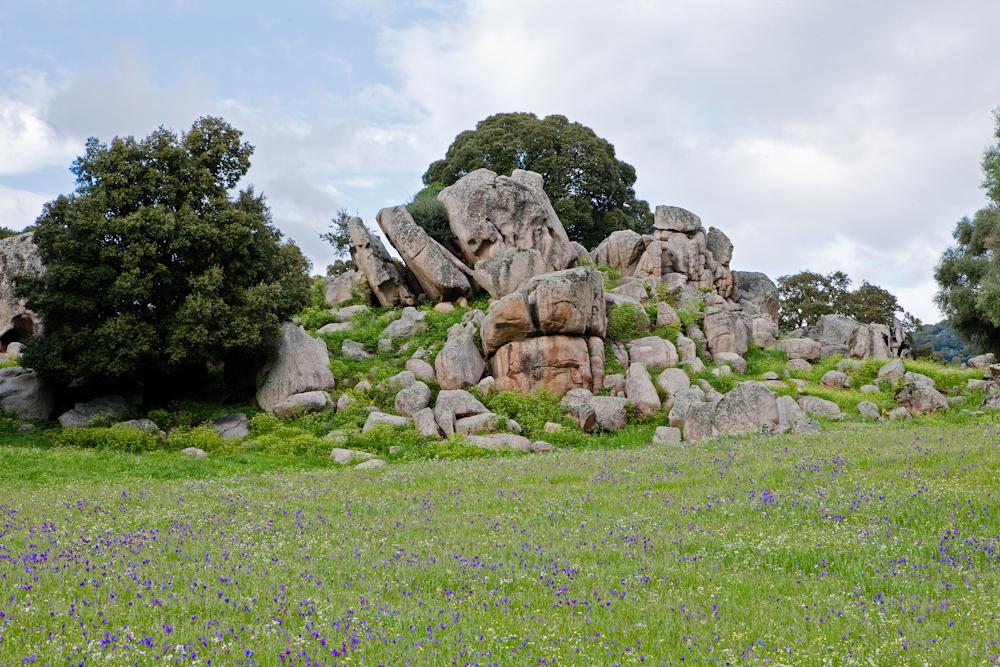 Filitosa - Butte  granitique d'où était  extraite les pierres  pour sculpter les  statues - Avril 2010