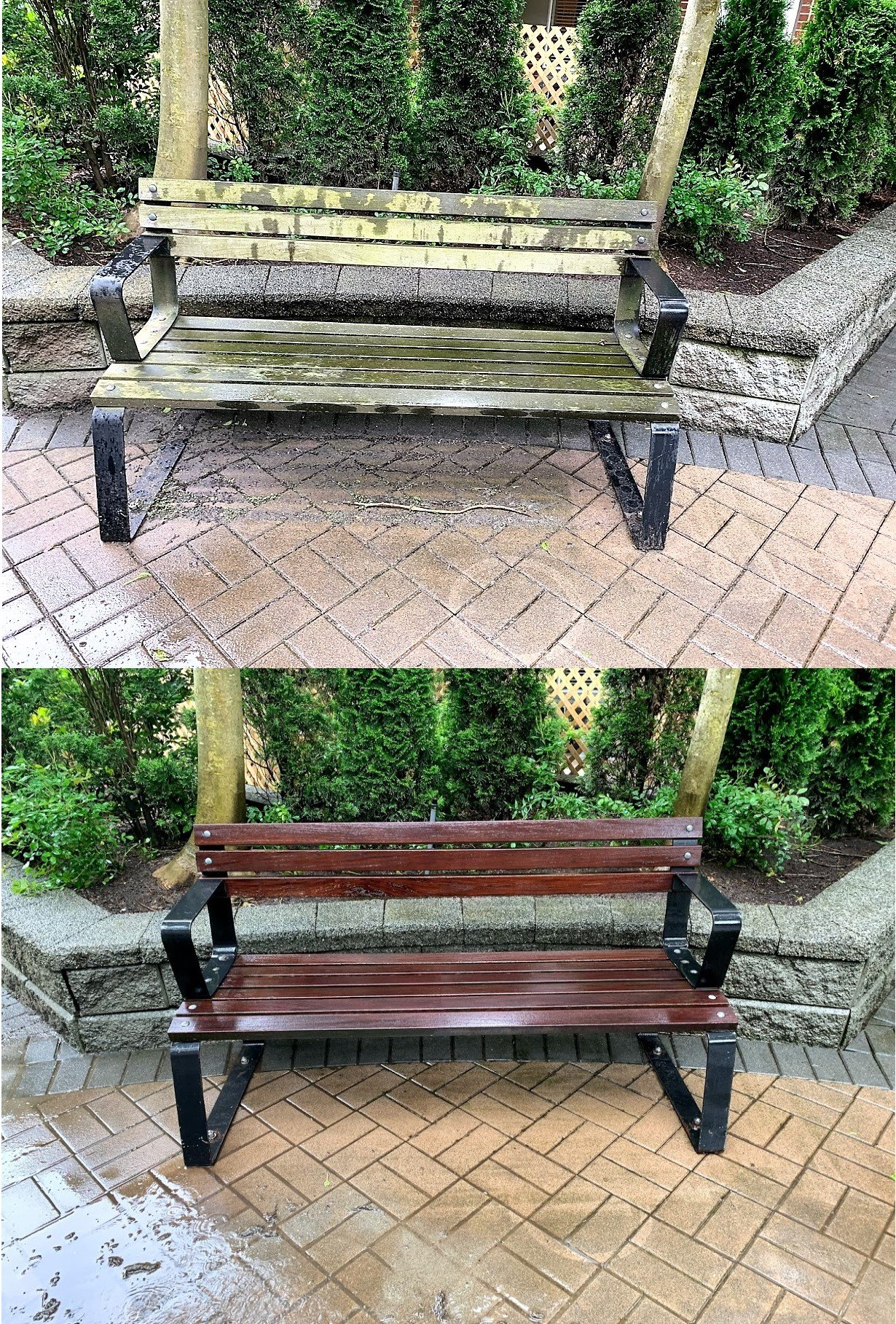 https://0901.nccdn.net/4_2/000/000/07a/dbb/bench.before.after.2020.jpg