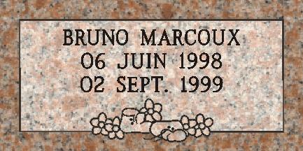 Marqueur #M-021