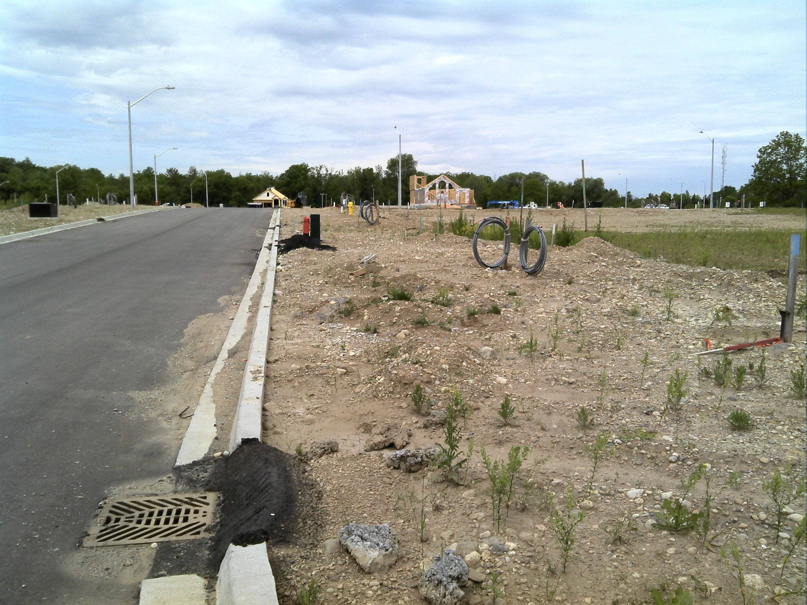 Urban soil assessment - boulevard areas in new subdivision.