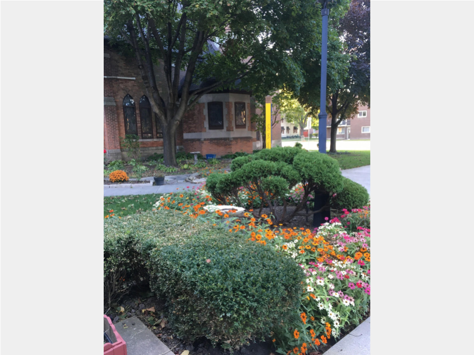 Church garden - Oct 2019