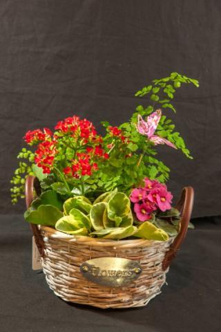 https://0901.nccdn.net/4_2/000/000/081/4ce/lcp-planter-basket-may12-2020-4750.jpg