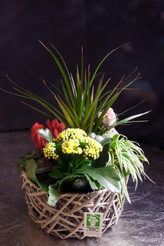 https://0901.nccdn.net/4_2/000/000/084/3b1/planter-basket-port-alberni-2.jpg