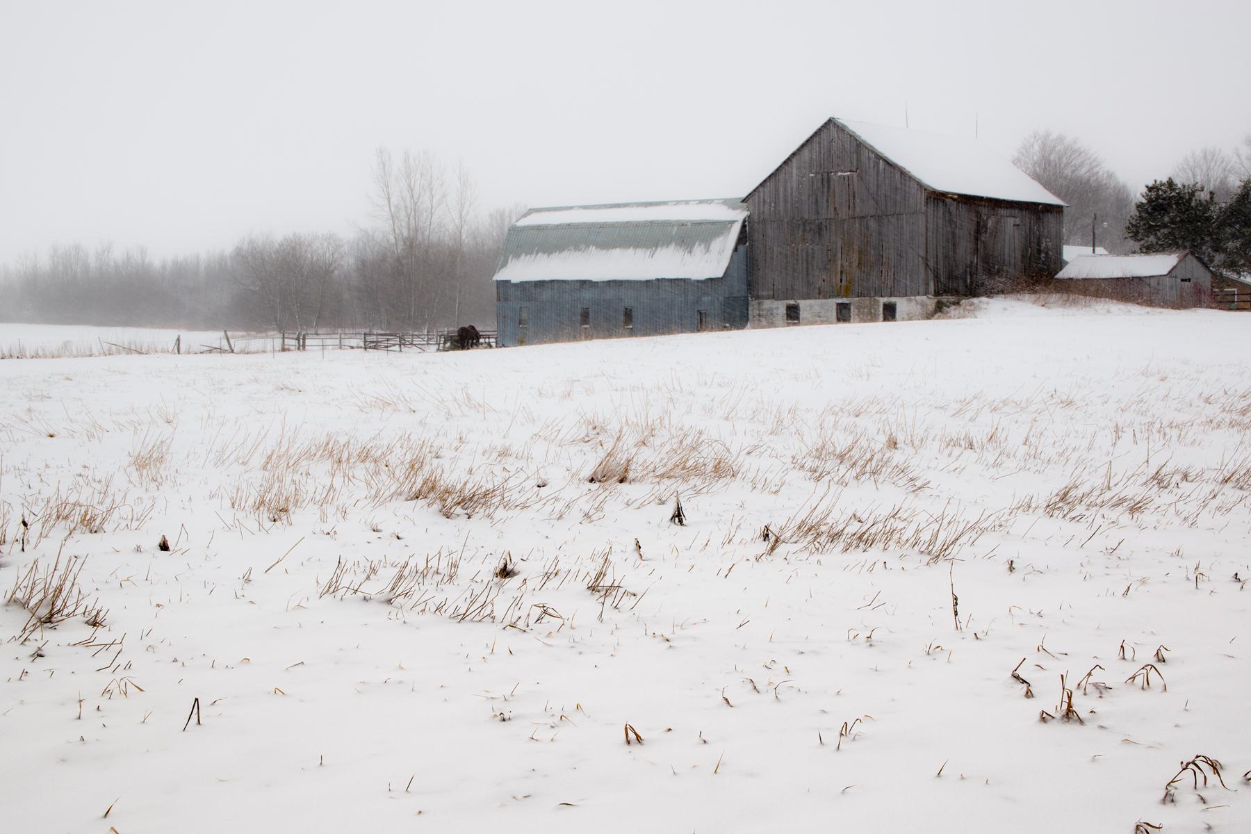https://0901.nccdn.net/4_2/000/000/084/68b/barn-in-snow-storm-4x6.jpg