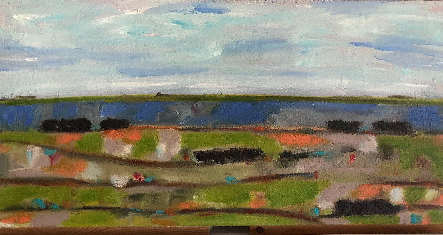 """Broad Horizons, 12""""x24"""" Oil on canvas $350"""