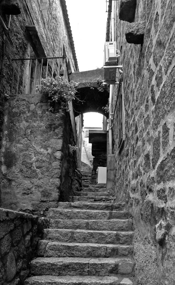 Chambre avec  vue ...sur les voisins  Sartène - Sud de la  corse - Avril 2010